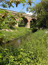 Viaduct at Quarry Lane Local Nature Reserve